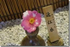 tsubaki130305-1-300x200