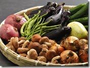 旬の地場野菜