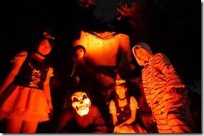 naito zoo