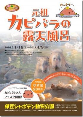 kapibararoten