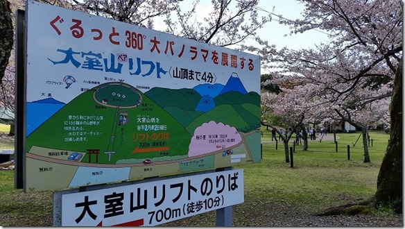 201704sakura (7)
