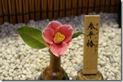tsubaki120221-19-300x200