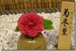 tsubaki130305-2-300x200
