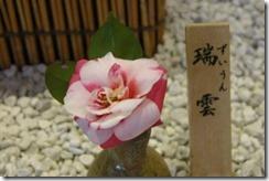 tsubaki130305-7-300x200