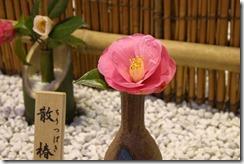 tsubaki140226-11