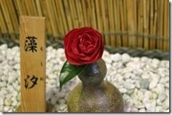 tsubaki140226-5-300x200