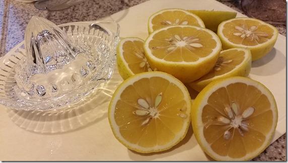 柑橘手作りドレッシング (2)